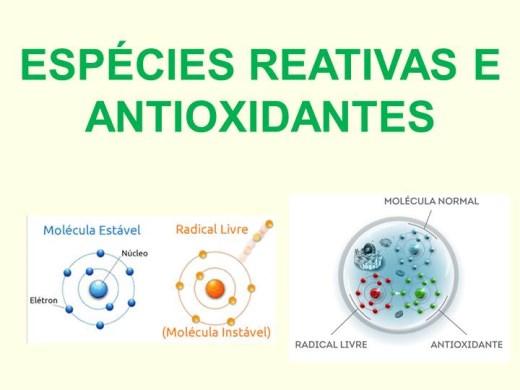 Curso Online de Espécies Reativas e Antioxidantes