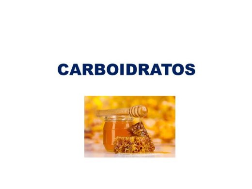 Curso Online de Carboidratos