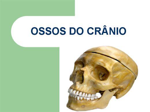 Curso Online de Ossos do Crânio