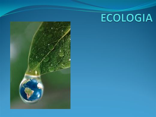 Curso Online de Ecologia