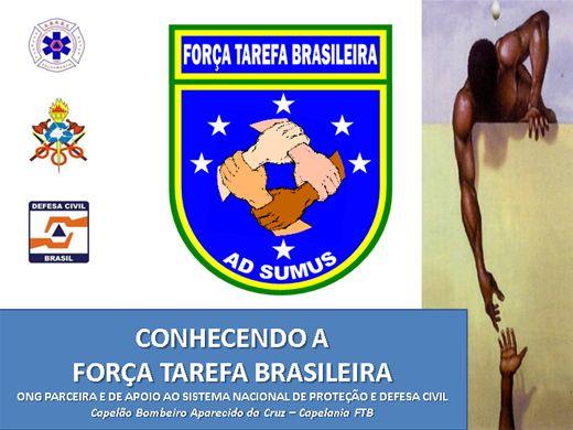 Curso Online de CONHECENDO A FORÇA TAREFA BRASILEIRA