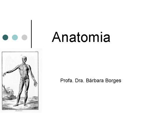 Curso Online de Anatomia humana I: aparelho locomotor