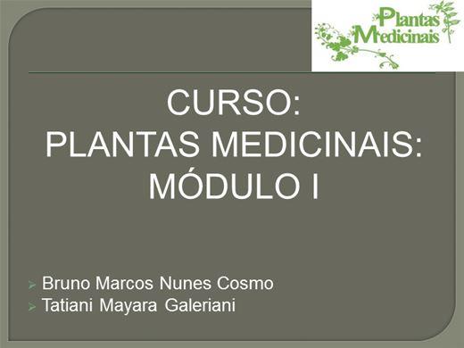 Curso Online de Plantas Medicinais - Módulo I