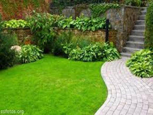 Curso Online de jardinagem e paisagismo
