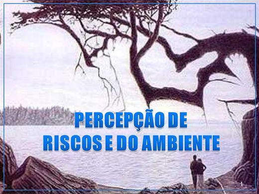 Curso Online de PERCEPÇÃO DE RISCOS