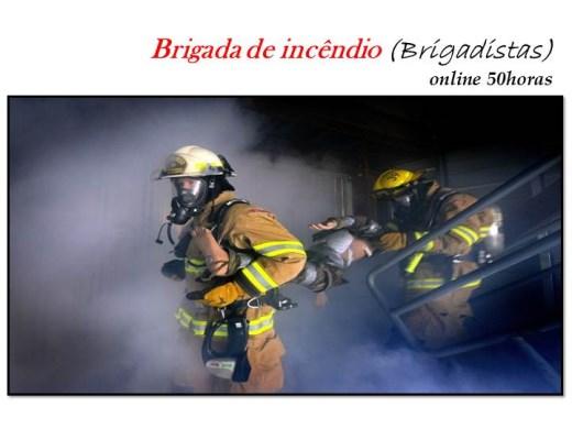 Curso Online de Brigada de incêndio (Brigadista)