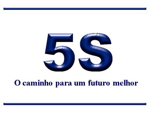 Curso Online de Técnicas de utilização dos 5S's