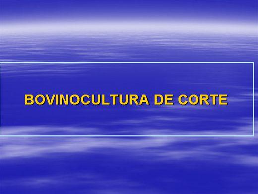 Curso Online de BOVINOCULTURA DE CORTE