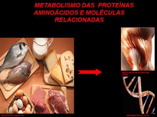 Curso Online de metabolismo de proteínas