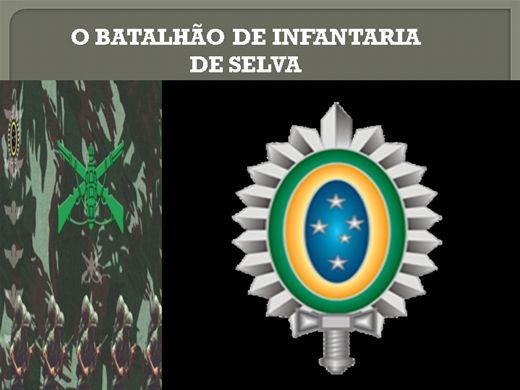 Curso Online de BATALHÃO DE INFANTARIA DE SELVA