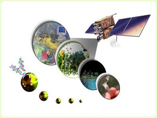 Curso Online de Sistemas de Informações Geográficas