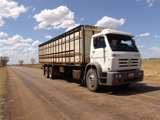 Curso Online de Condutores de Veículos de Transporte de Cargas Vivas