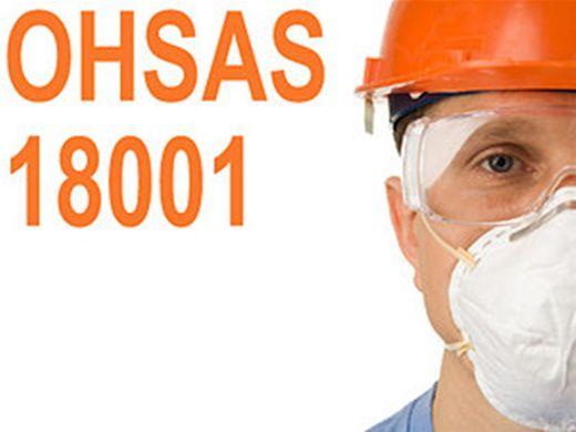 Curso Online de OHSAS 18001 - Sistemas de Gestão de  Segurança e Saúde Ocupacional - Interpretação
