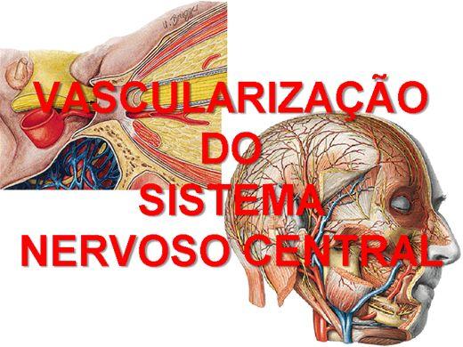 Curso Online de VASCULARIZAÇÃO DO SISTEMA NERVOSO CENTRAL