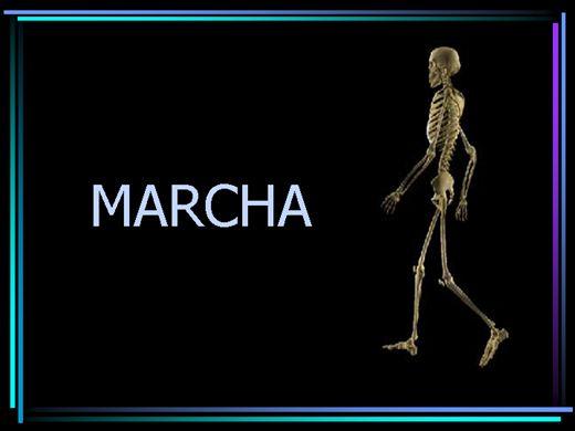 Curso Online de Marcha