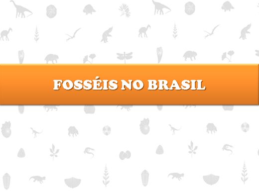 Curso Online de Fósseis no Brasil