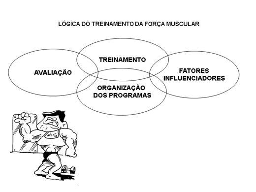 Curso Online de Estrutura do Treinamento da força muscular