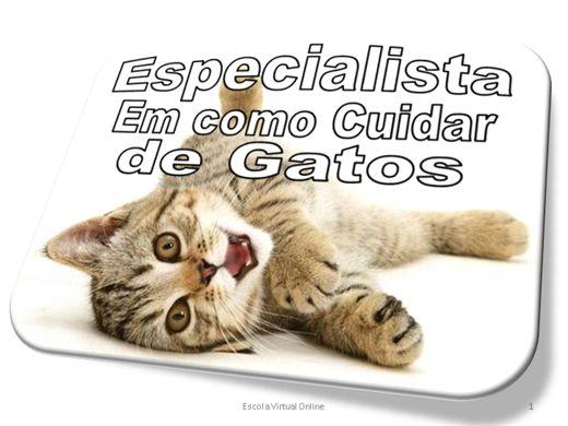 Curso Online de ESPECIALISTA EM COMO CUIDAR DE GATOS