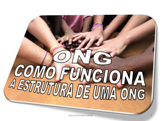 Curso Online de ONG - COMO FUNCIONA A ESTRUTURA DE UMA ONG