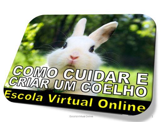 Curso Online de COMO CUIDAR E CRIAR UM COELHO