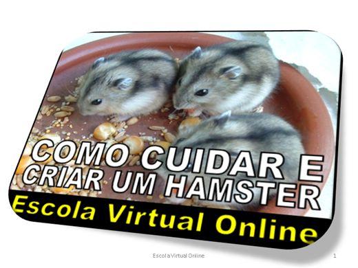 Curso Online de COMO CUIDAR E CRIAR UM HAMSTER