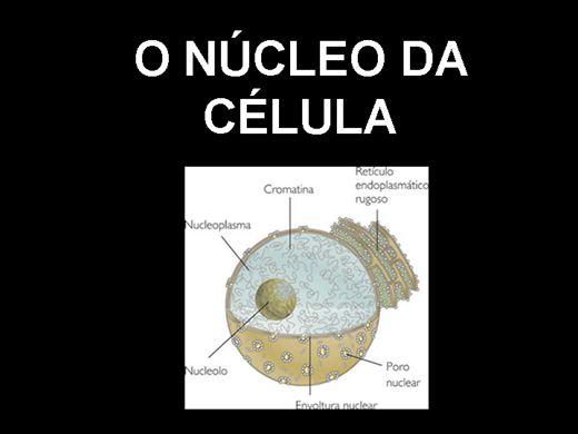 Curso Online de Biologia Celular: O Núcleo da célula.