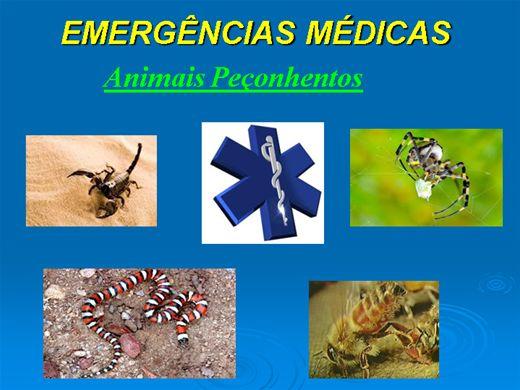 Curso Online de Emergências Médicas - Animais Peçonhentos