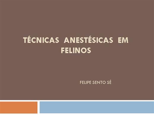 Curso Online de Técnicas Anestésicas em Felinos