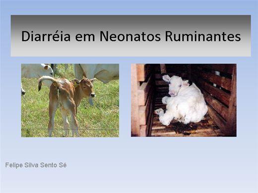 Curso Online de Diarreia em Neonatos Ruminantes