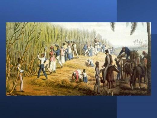 Curso Online de Sociedade açucareira no período colonial .