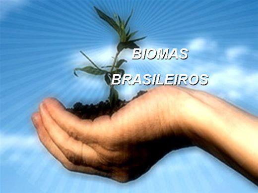 Curso Online de Os Seis Biomas Brasileiros