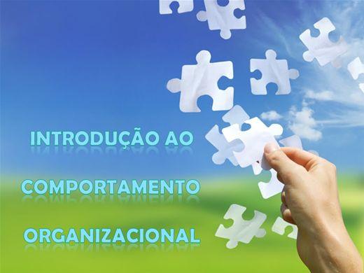 Curso Online de Introdução ao Comportamento Organizacional