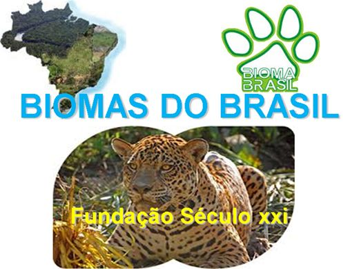 Curso Online de Biomas do Brasil