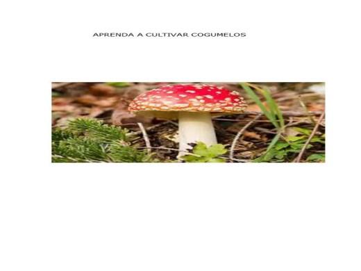 Curso Online de aprenda cultivar cogumelo