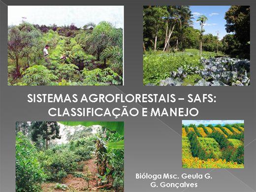 Curso Online de Sistemas Agroflorestais - Safs: Classificação e Manejo