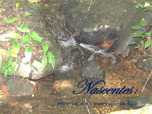 Curso Online de NASCENTES: importância e conservação da água
