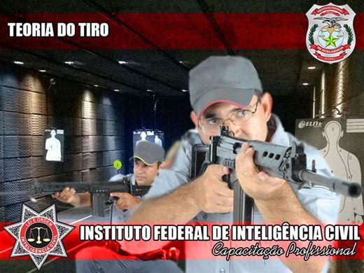 Curso Online de TEORIA DO TIRO