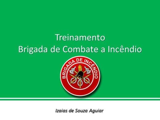 Curso Online de BRIGADA DE COMBATER A INCÊNDIO
