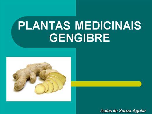Curso Online de PLANTAS MEDICINAIS - GENGIBRE