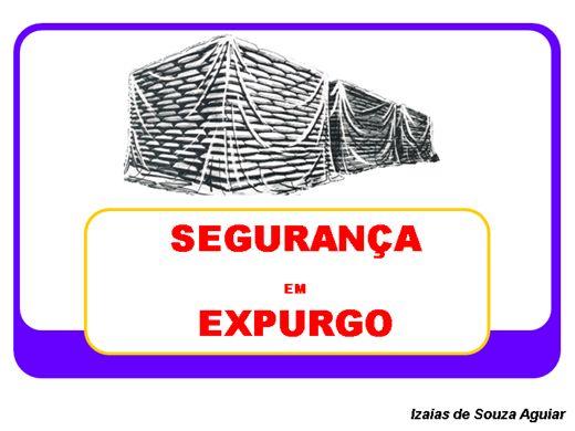 Curso Online de SEGURANÇA NA APLICAÇÃO DE EXPURGO