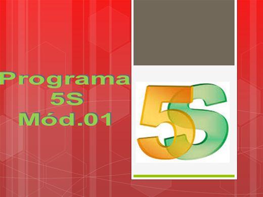 Curso Online de PROGRAMA 5 S - Módulo 01