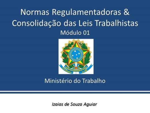 Curso Online de NORMAS REGULAMENTADORAS - MINISTÉRIO DO TRABALHO - Módulo 01