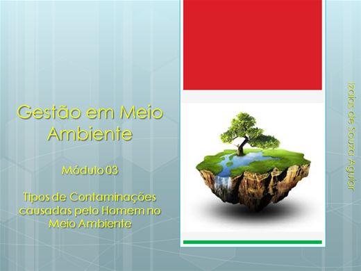 Curso Online de Gestão em Meio Ambiente  - Módulo 03  Tipos de Contaminações causadas pelo Homem no  Meio Ambiente