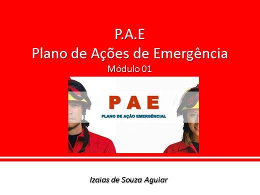 Curso Online de P.A.E - Plano de Ações de Emergência - Módulo 01