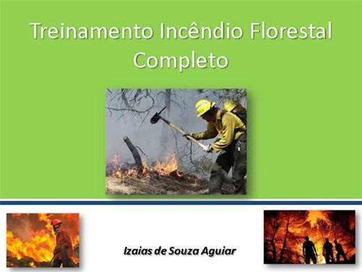 Curso Online de Treinamento Completo de Combate a Incêndio Florestal