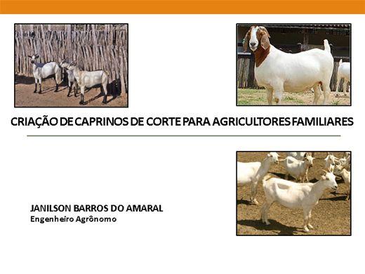 Curso Online de CRIAÇÃO DE CAPRINOS DE CORTE PARA AGRICULTORES FAMILIARES
