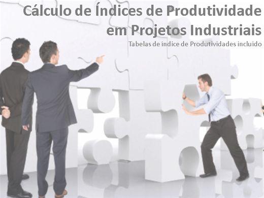 Curso Online de Cálculo de ìndices de Produtividade em Projetos Industriais