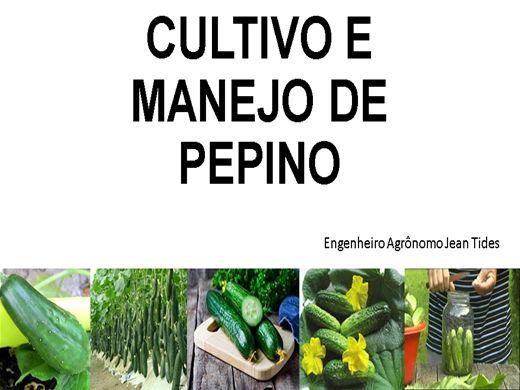 Curso Online de Cultivo e Manejo do Pepino