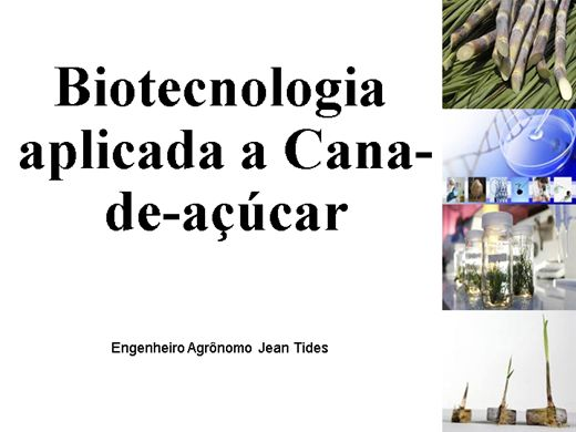 Curso Online de Biotecnologia aplicada a Cana-de-açúcar