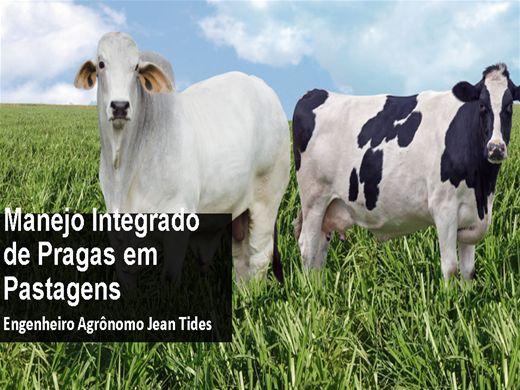 Curso Online de MANEJO INTEGRADO DE PRAGAS (MIP) EM PASTAGENS